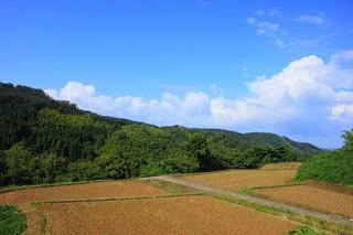 竹とうろう26.jpg